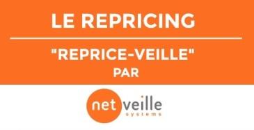 data-vise-repricing-version-finale-copie